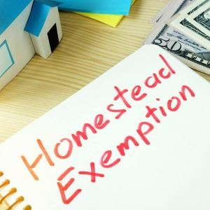 Drawing of a house, a notebook with the words Homestead Exemption written on the notebook and cash..